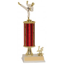 MA15 Martial Arts Trophy